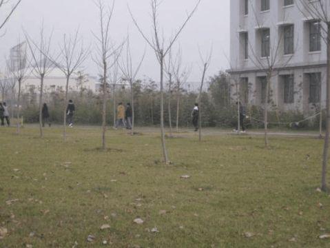 校园绿地调查研究