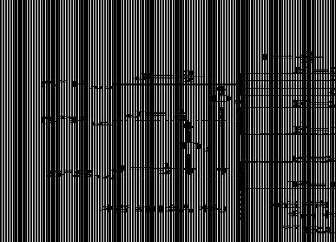 光泵磁共振实验