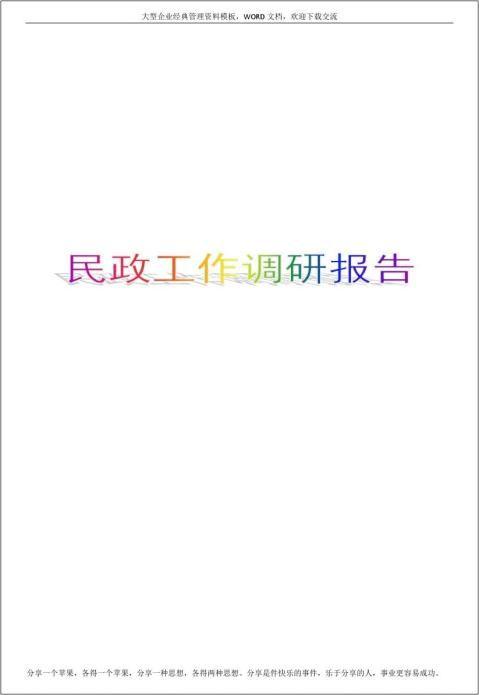 民政工作调研报告5p
