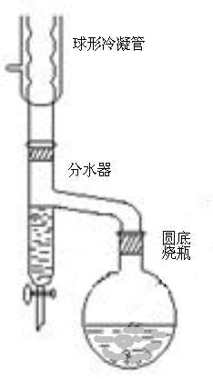 乙酸异戊酯的制备