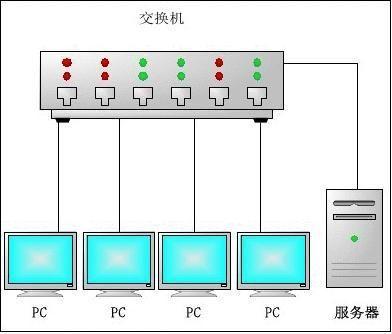 实验报告局域网组建
