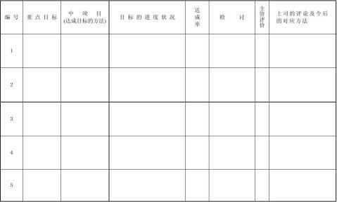目标进度中间报告书