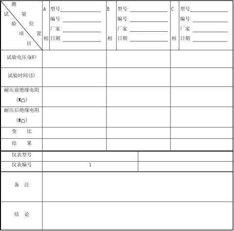 10kV电流互感器试验记录表格