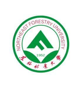 东北林业大学毕业研究生就业推荐表