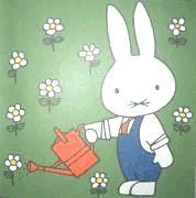 学习活动小兔乖乖